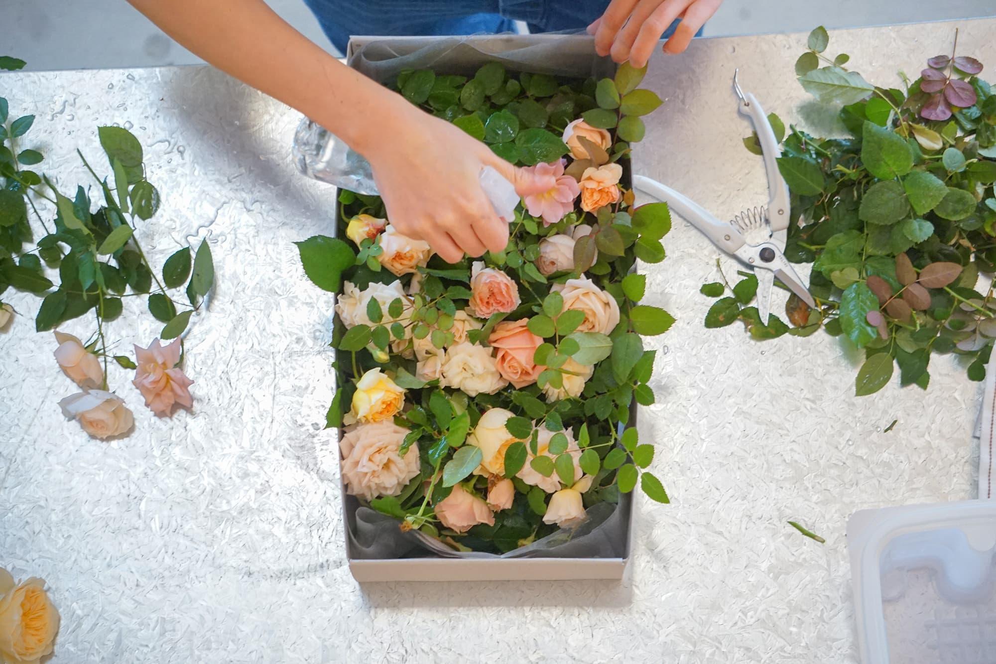 新鮮な摘みたてのばらを箱に詰めて贈る「BOX わばら農園」