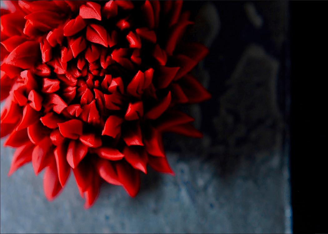 用剪刀精巧剪出片片花瓣,呈現菊花盛開樣貌的練切菓子
