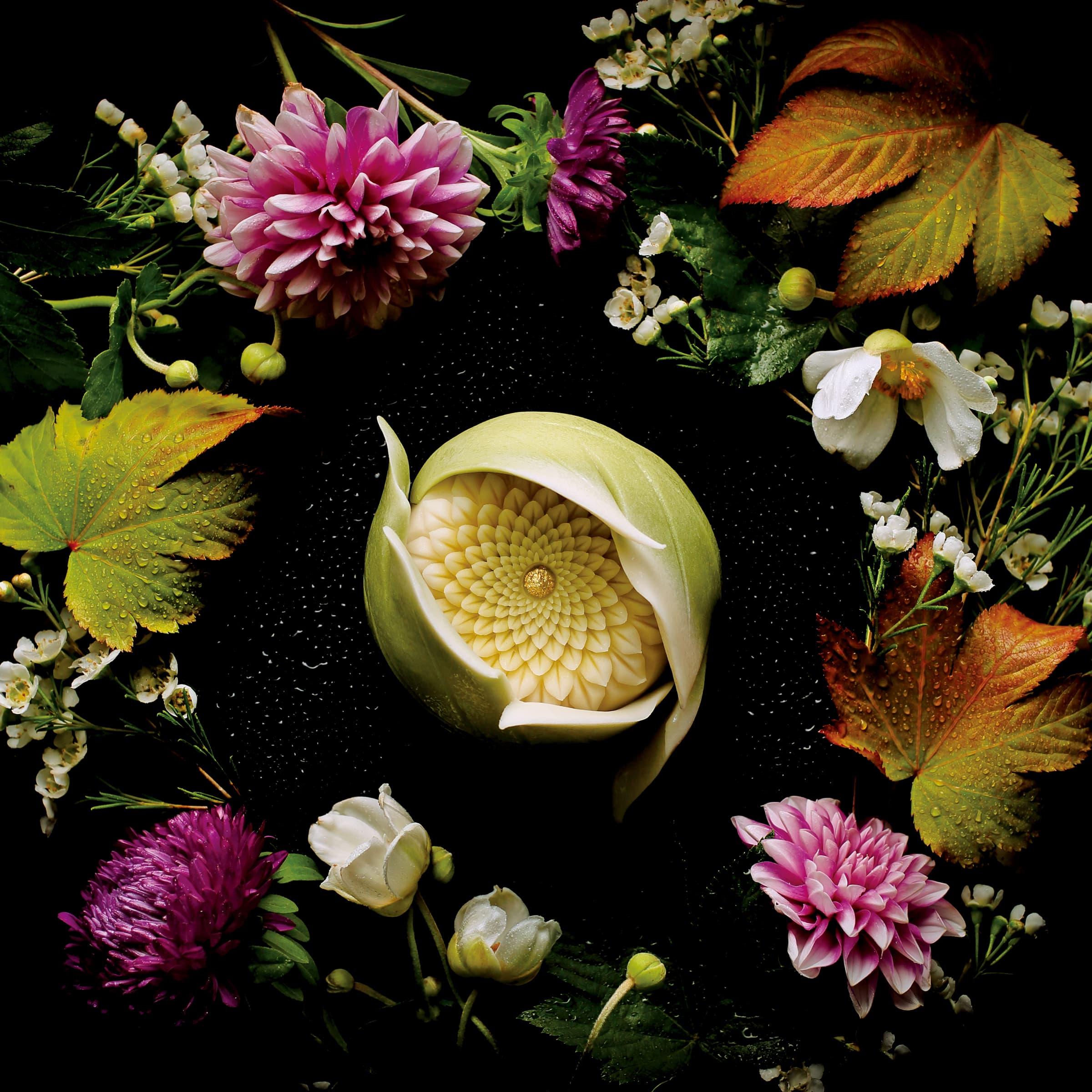 菓銘「葉隱菊(Peeping Chrysanthemum)」。華麗的菓子,名稱讓人聯想到武士精神。