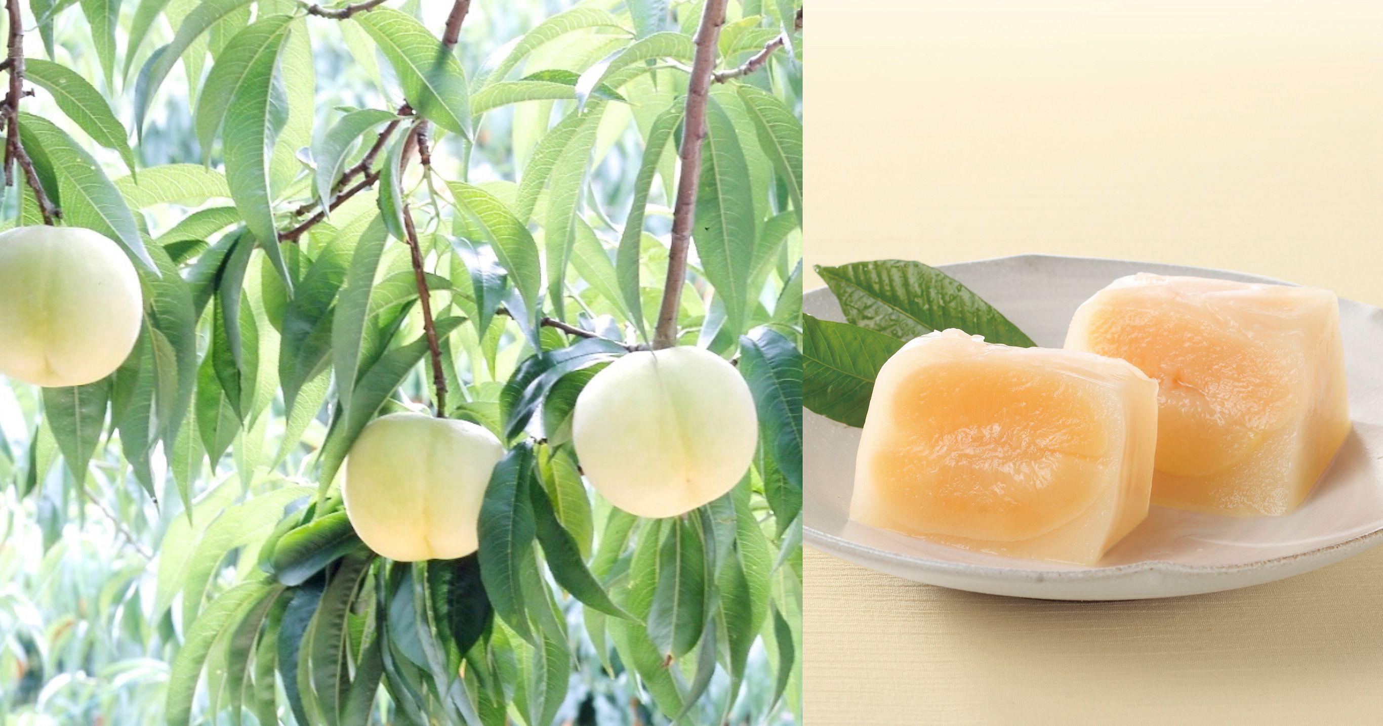 白桃丸ごと1個を使った華やかさのある「桃泉果」