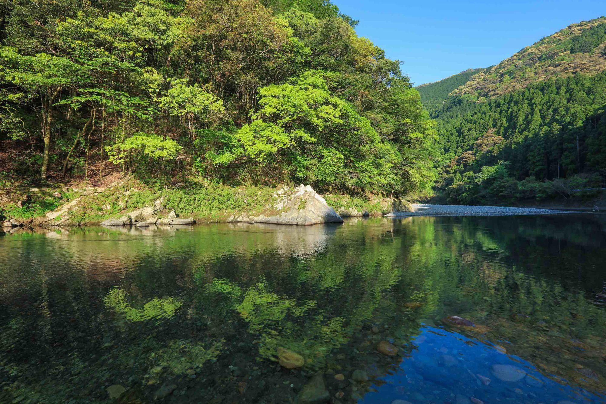 国内でも指折りの水質と透明度を誇る野根川。清流でしか生息しない生物も多く見られる