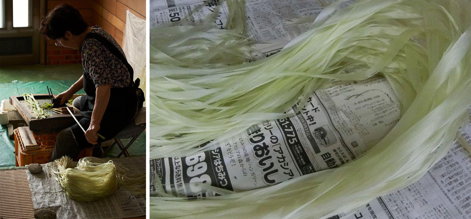 「からむし引き」。オヒキゴと呼ばれる道具の刃で緑の粗皮を削ぎ、内側の繊維をとり出す。(写真提供:昭和村) 写真右からむしのキラ。キラとは「からむし引き」でとり出されたばかりの繊維の放つ光沢のこと。Photography by MasakoSuda