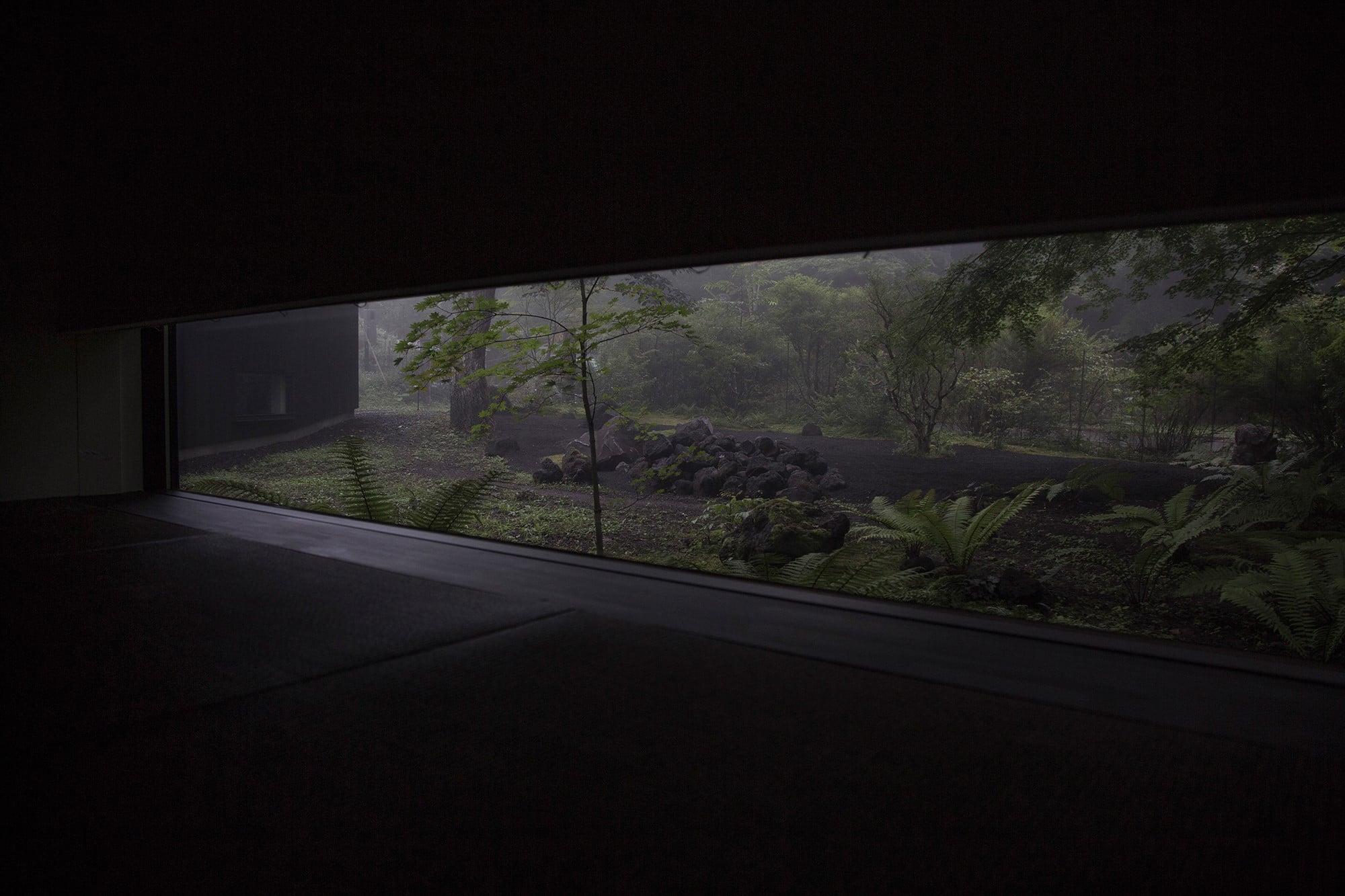 ゲストルームでは寝転んだとき、まるで自然の中に身を委ねているように錯覚する。