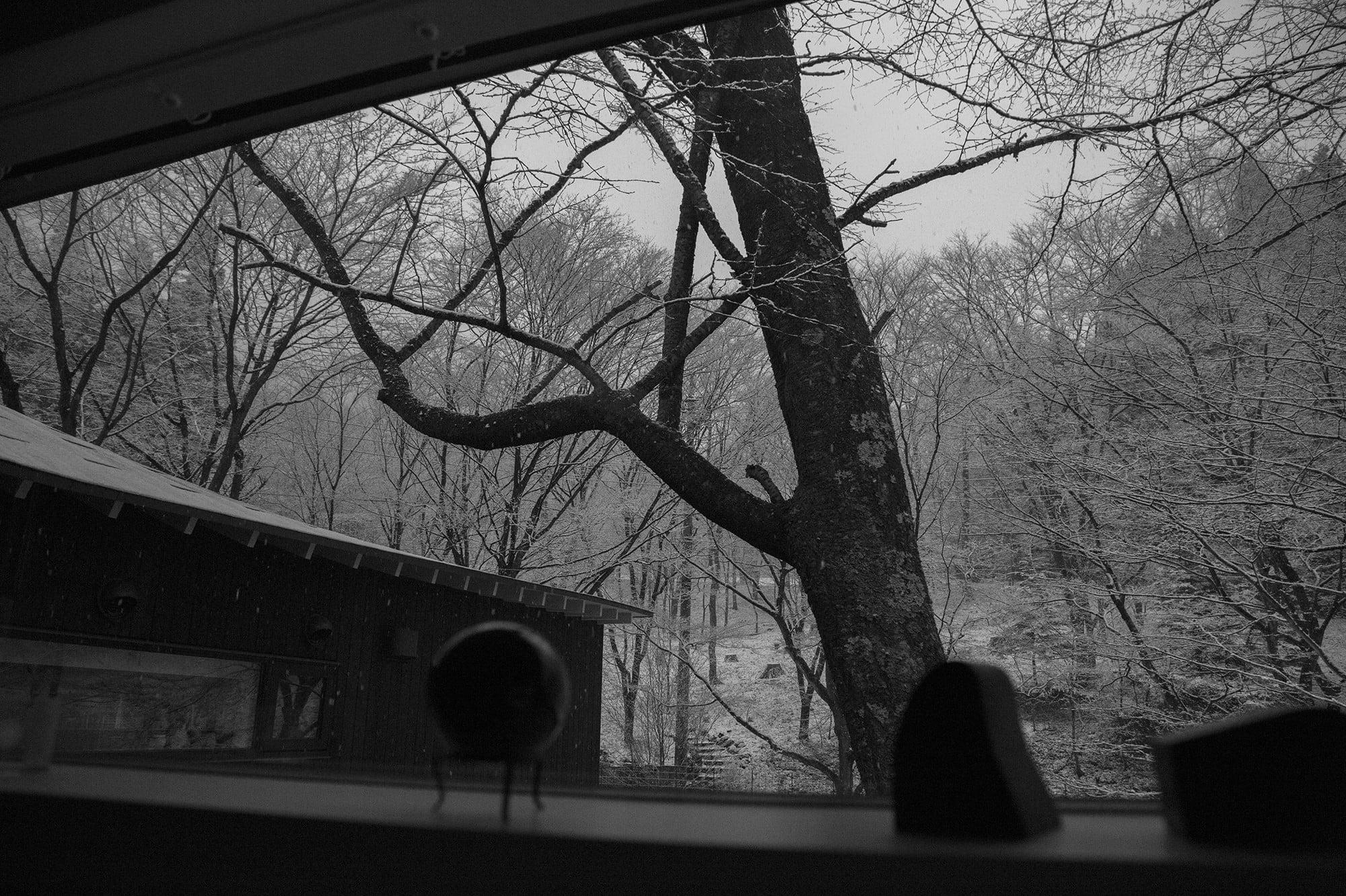 横に細長く切り取られた窓からは広がる自然と空が伺えて、静寂が自邸を包んでいく。