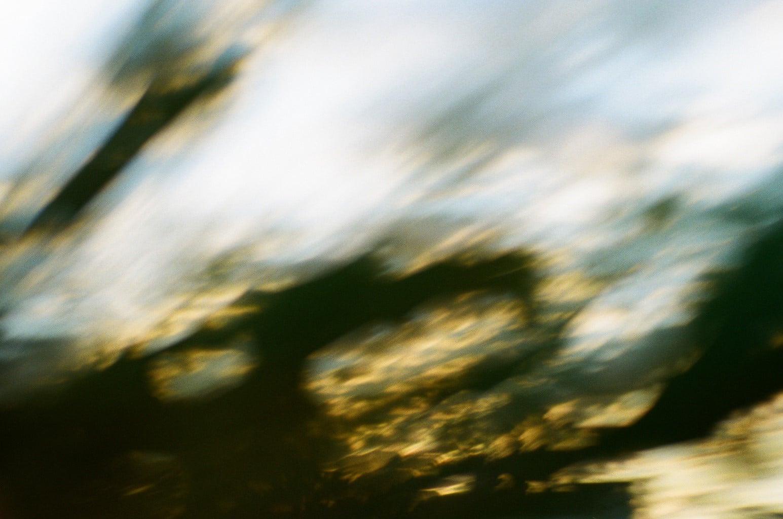 小雪イメージ 空と針葉樹