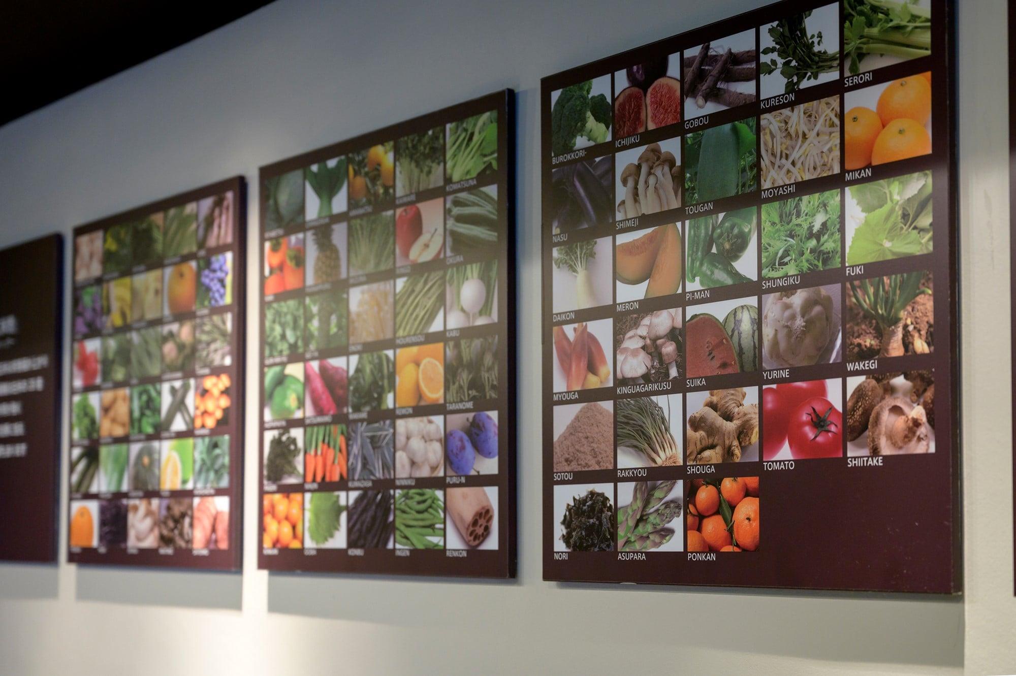 壁面にはさまざまなメニューに使われている70種類以上の野菜や果物をパネルで展示。