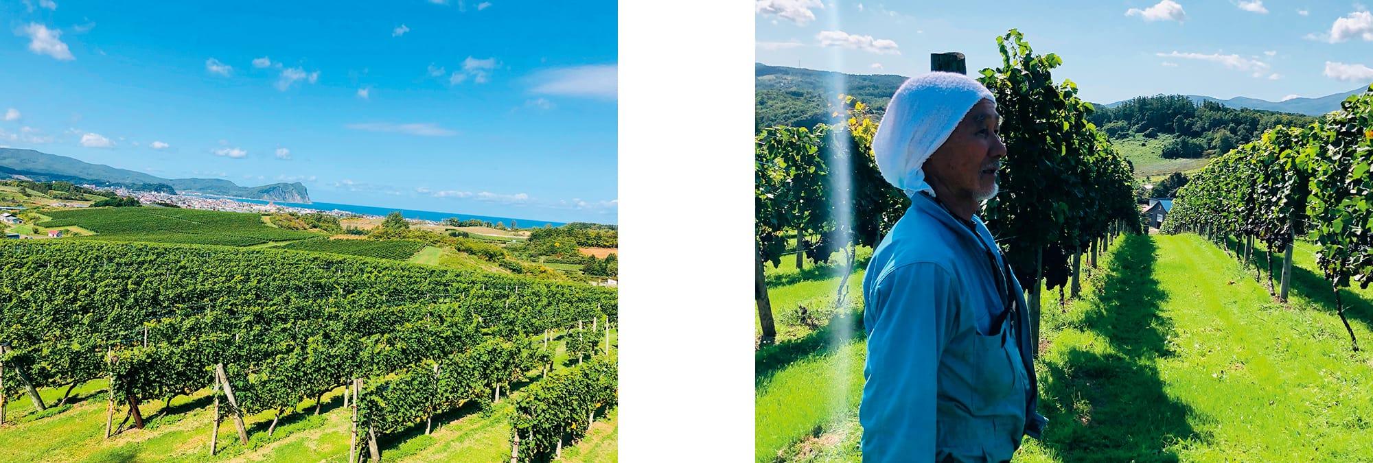 左:日本海を見下ろす起伏の豊かな傾斜地に広がる余市のぶどう畑。年間平均気温8.1℃と冷涼だが、北海道の中では比較的温暖で凍害の心配も少なく、酸味を維持しながらぶどうが成熟する恵まれた地。右:「グランポレール」の契約栽培農家のひとり、弘津敏。ピノノワール、ツヴァイゲルトレーベ、ケルナー等の栽培を手掛けている。