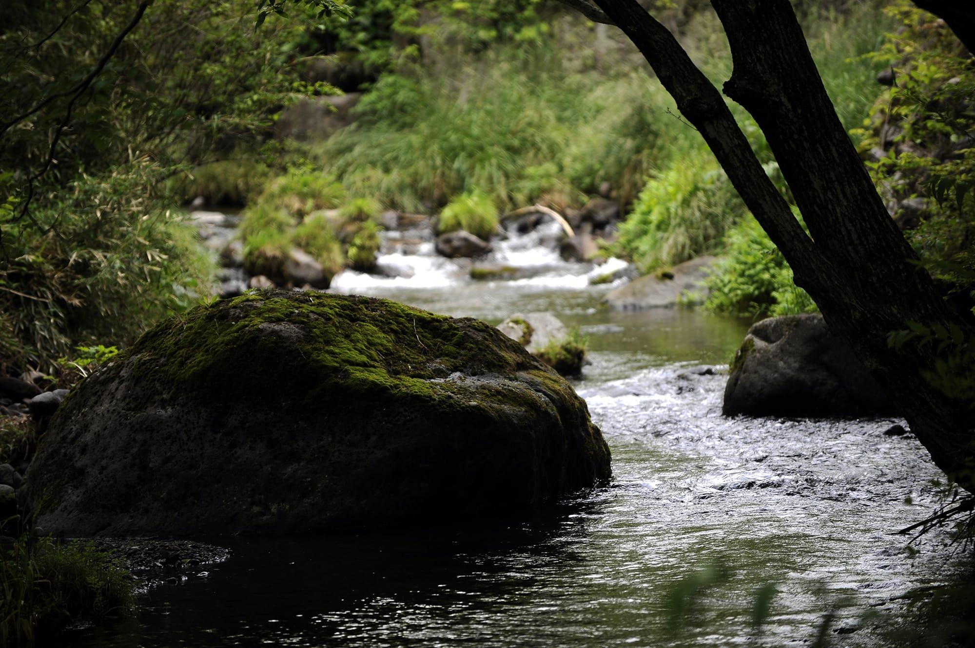 「アートビオトープ那須」がある横沢の地は、那須の郷土誌によれば「水の豊かな場所」と記されている。