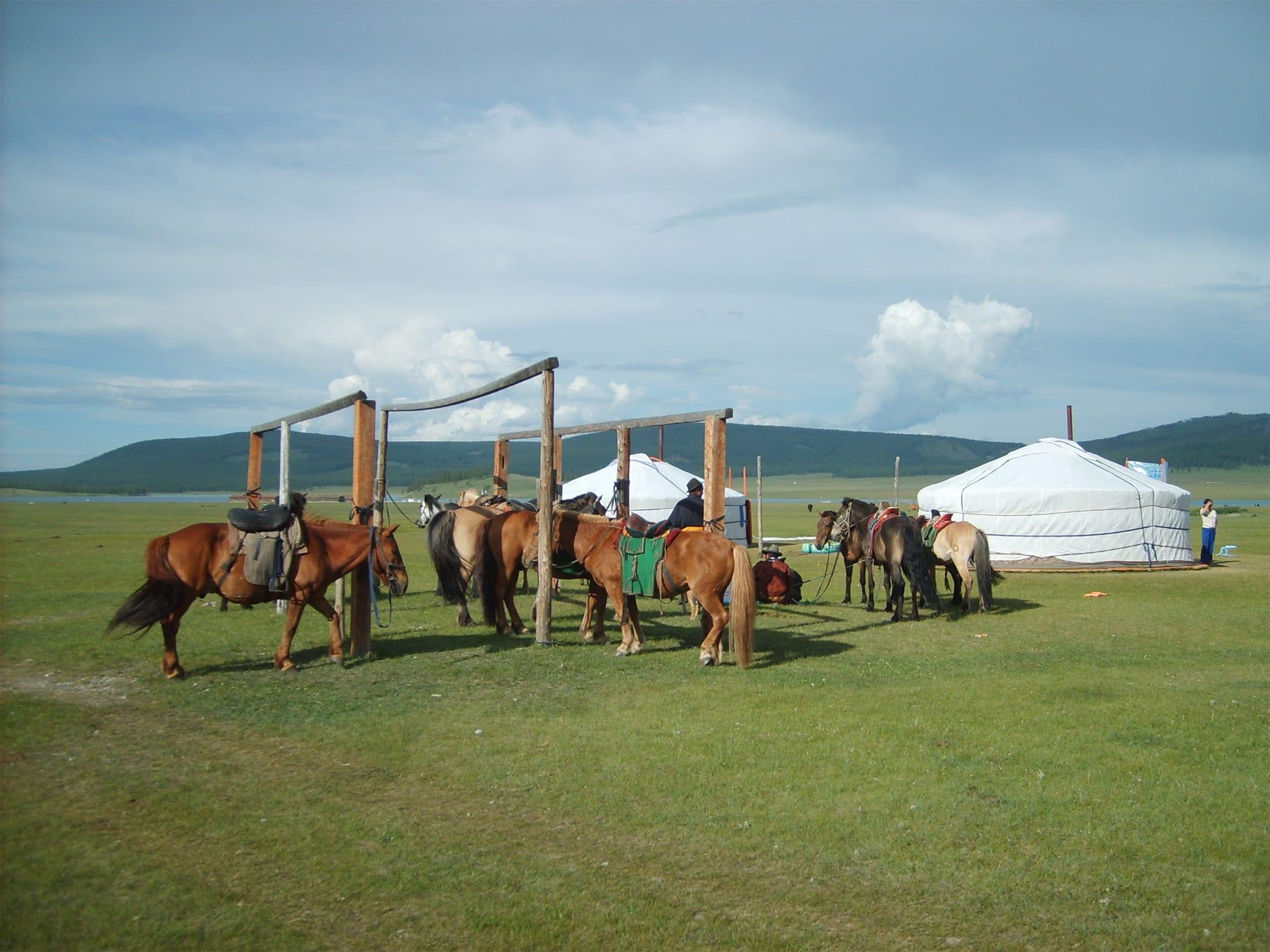 「Terelj Hotel  テレルジホテル」(モンゴル・ウランバートル)の遊牧民の実生活ツアー