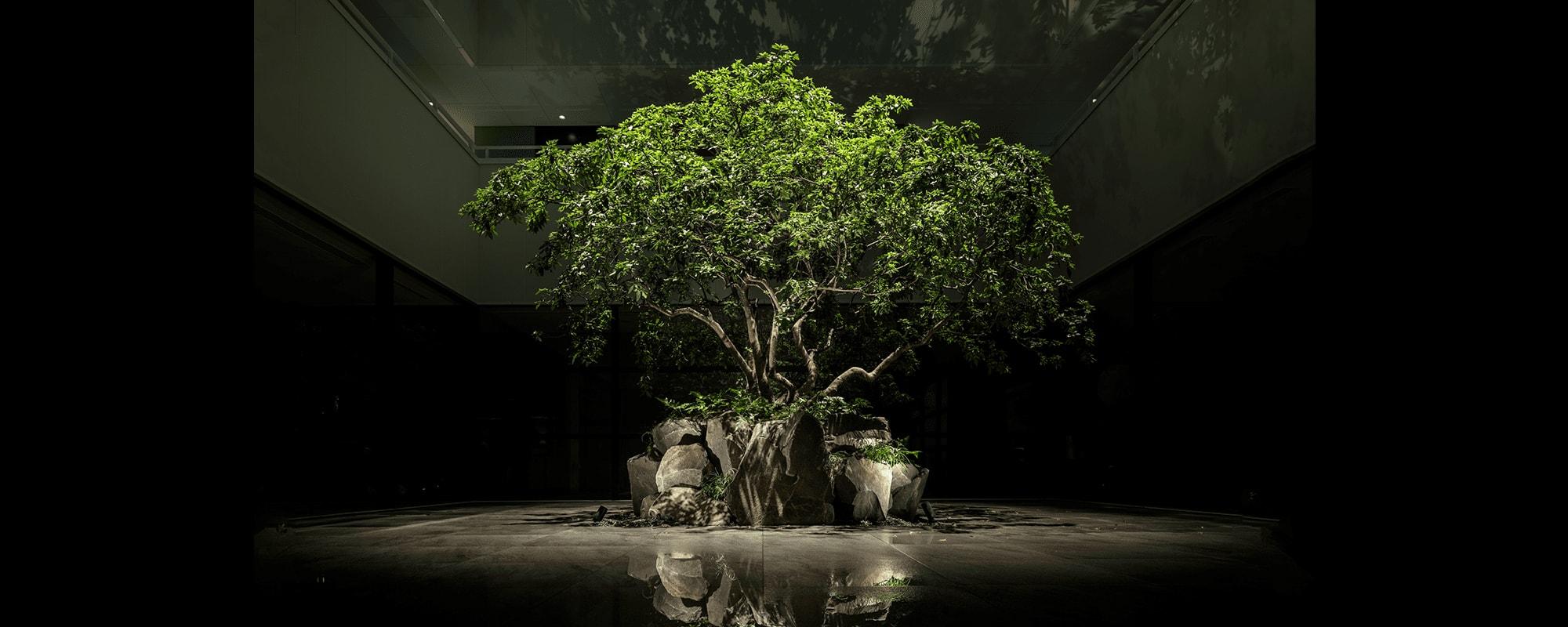 「THE GENERAL KYOTO Takatsuji Tominokoji  ザジェネラルキョウト高辻富小路」(日本・京都)スイスのデザイングループ、アトリエ・オイが、日本で初めて手がけた空間デザインとインスタレーション