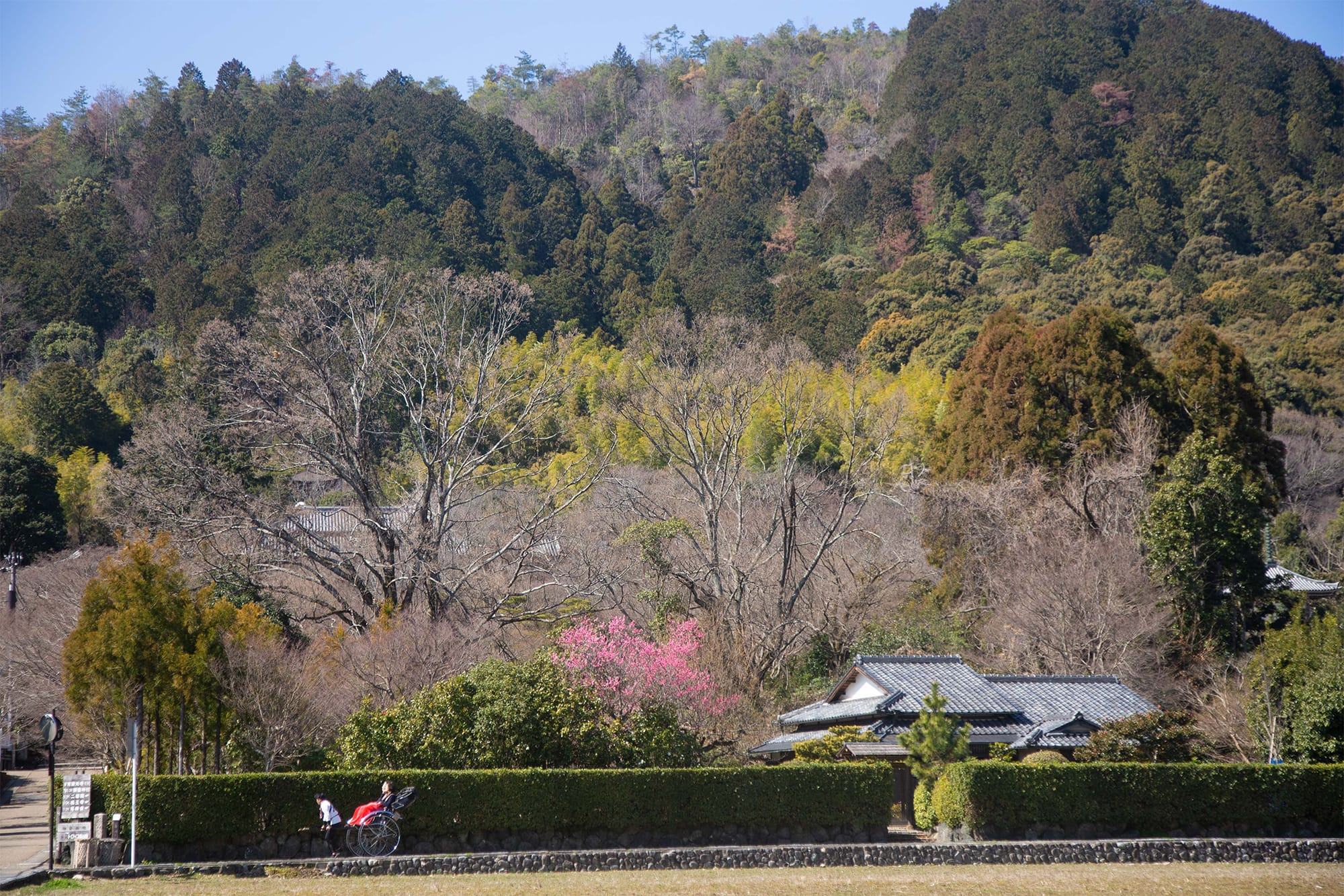 アトリエシムラの工房のほど近く、落柿舎あたりに広がるのどかな里山の風景。豊かな自然の色彩に満ちている。