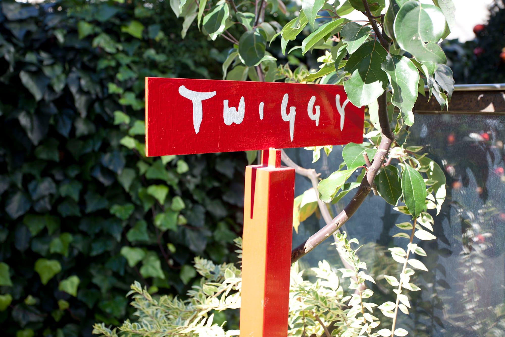 メイン画像twiggy