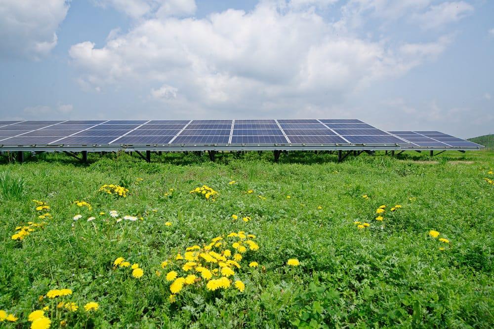 熊本県には、自然電力グループが手掛けた多くの太陽光発電所がある。
