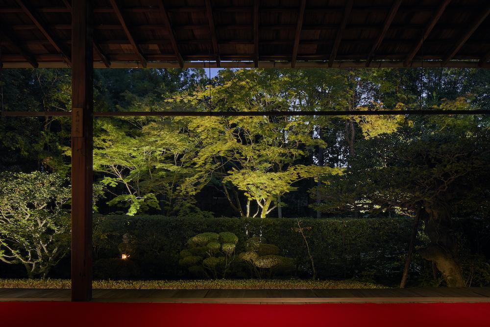 妙心寺桂春院 真如の庭