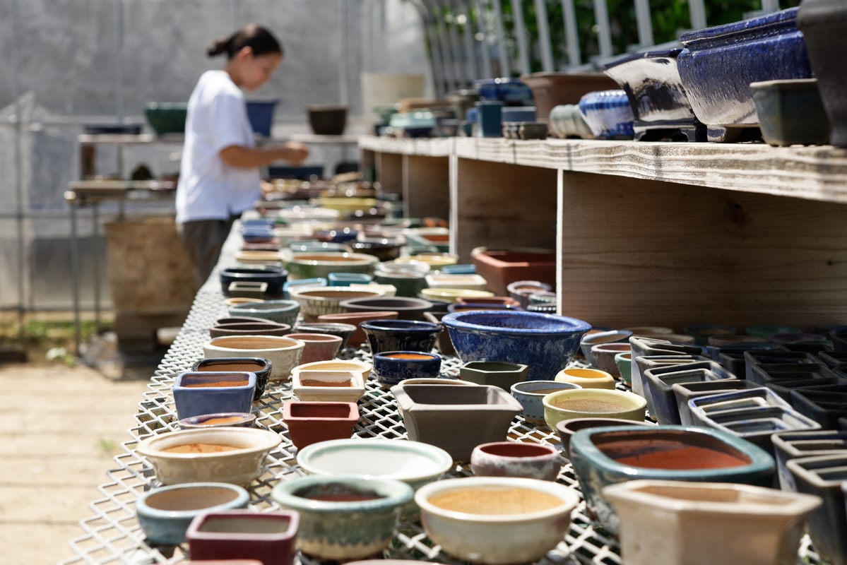 作家ものを中心に揃えた鉢は500円前後~。どんな苗を植えるか相談しながら選んでも。